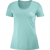 SALOMON - AGILE SS TEE W MEADOWBROOK - WOMEN